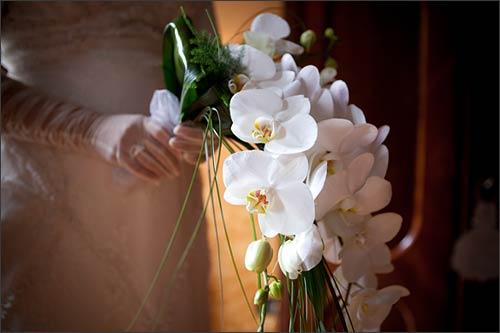 bouquet-orchidee-fiorista-La-Piccola-Selva-lago-d'Orta
